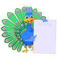 Peacock holding placard vector image