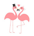 pink flamingo set wedding couple exotic tropical vector image vector image