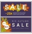 Set horizontal autumn sale banners vector image vector image