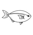 line delicious seafood fish with natural nutrition vector image