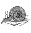 a totem animal Snail on leaf in black and vector image vector image