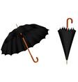 Black umbrellas vector image vector image