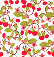 cute background with Cherries and blossom vector image vector image