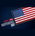 fourth july american independence day vector image vector image