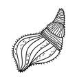 marine shell isolated icon vector image vector image