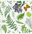 seamless pattern with leaves berry vector image vector image