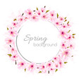 spring background with a pink blooming sakura vector image