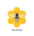 Apiary concept with bee and honeycomb vector image vector image