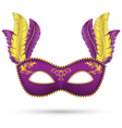 Purple mask with feathers vector image vector image