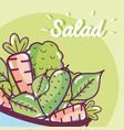 delicious and healthy salad vector image