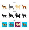 dog breeds cartoonblackflat icons in set vector image vector image