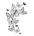 flight contour butterflies vector image