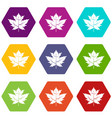 gooseberry leaf icon set color hexahedron vector image vector image
