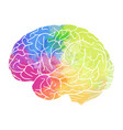 human brain with rainbow watercolor spray on a vector image vector image
