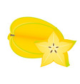 starfruit isolated on white vector image vector image