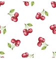 Watercolor pattern of fruit cherry vector image vector image