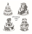 Wedding cakes set vector image vector image