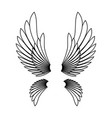 angel wings template logo design element vector image