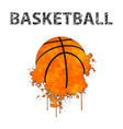 basketball as stains vector image vector image