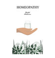 floral border and with homeopathy granules bottle vector image vector image