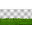 grass border with isolated background vector image vector image