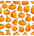 halloween autumn pumpkin seamless pattern vector image