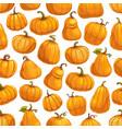 halloween autumn pumpkin seamless pattern vector image vector image
