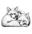 little foxes wall sticker vector image vector image