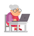 pc computer granny with old lady education vector image vector image