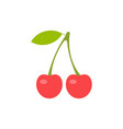 red cherry two cherries vector image vector image