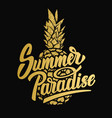 summer paradise hand drawn lettering phrase on vector image vector image