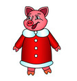 symbol of the year pig in new years red fur coat vector image