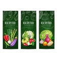 Vegetables sketch on banners Healthy food vector image vector image