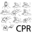 emergency first aid cpr procedure vector image