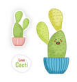 cactus plant cartoon character funny smiling cute vector image