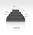 Business Infographics pyramid cube black color vector image