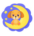 cute cartoon little dog vector image