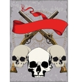 Pirate Poster with skulls vector image vector image