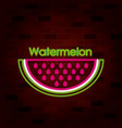watermelon slice fruit and text on neon sign on vector image