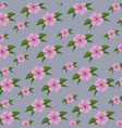 cute floral background with leaves design vector image vector image