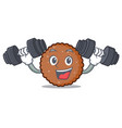 fitness chocolate biscuit character cartoon vector image