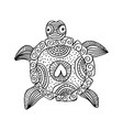 hand drawing monochrome doodle turtle decorated vector image