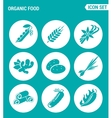 set of round icons white Organic food asparagus vector image vector image