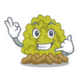 call me green coral reef toys cartoon shapes vector image