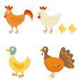 Farm birds vector image