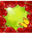frame cherry vector image vector image