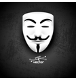 Mask anonymous on black vector image vector image