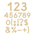 numbers and signs of braids vector image