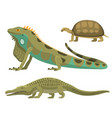 reptile and amphibian colorful fauna vector image
