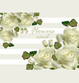 white roses flowers card realistic vector image vector image